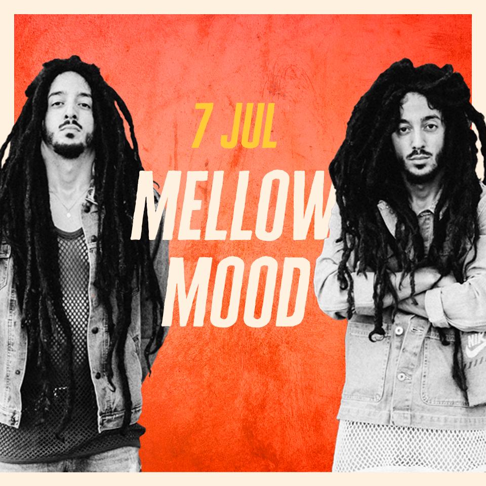 mellow-palcoMUSA2018